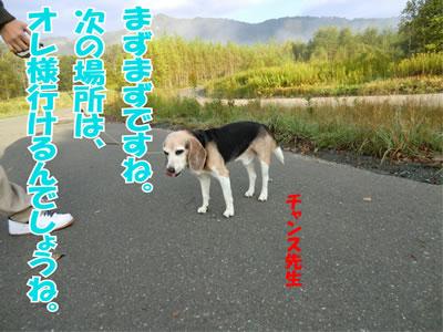 20110927-14.jpg