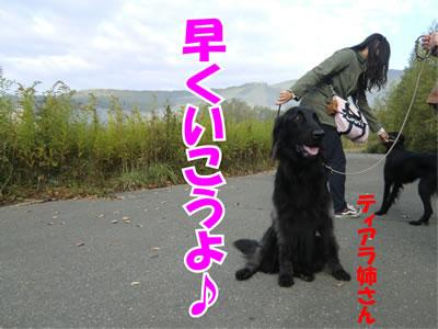 20110927-3.jpg