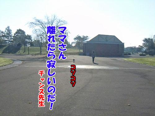 20131021-10-500