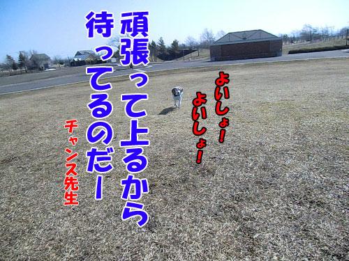 20140424-4-500