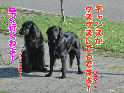 20140525-1-500