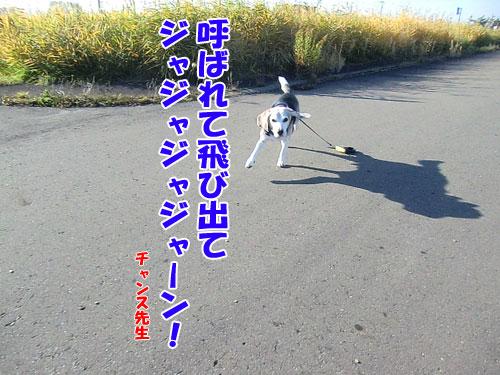 20141022-4-500