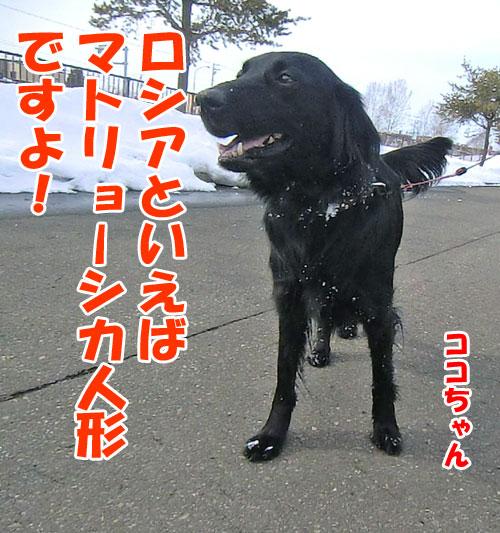 20150306-2-2-500