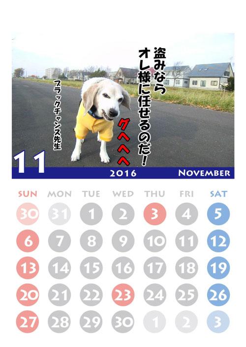 2016black-11