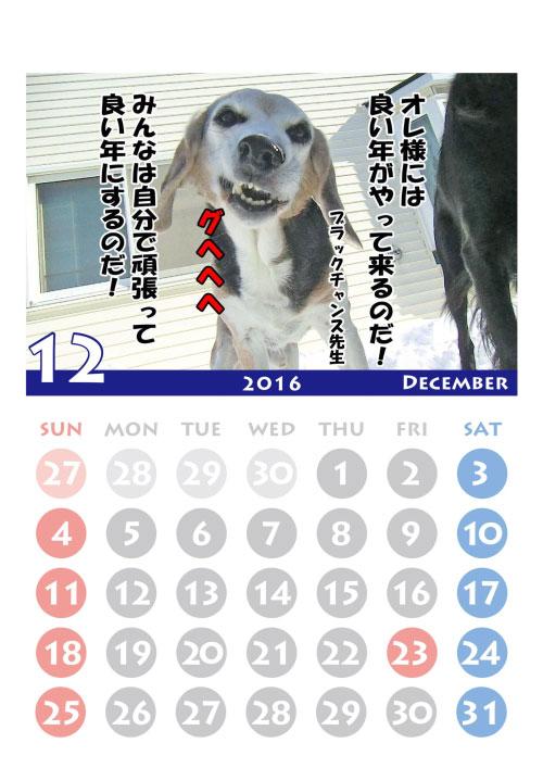 2016black-12