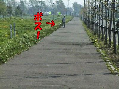 チャンスとティアラ+ココ-20120523-4-400.jpg