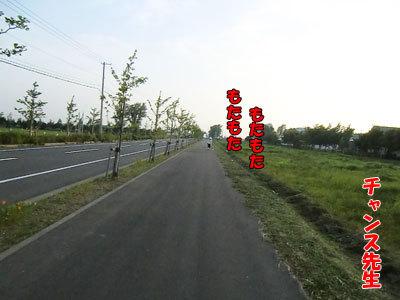 チャンスとティアラ+ココ-20120730-3-400.jpg